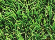 Artificial grass: Sutton 30mm pile artificial grass