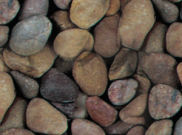 Decorative chippings, gravels & pebbles: Tweed pebbles 20-40mm 25kg bag