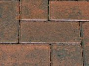 50mm pavers: Golden brindle 50mm block paver