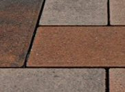 Trade pavers 50mm & 60mm: Trade sycamore 50mm block paver