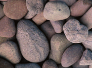 Cobbles rockery stones: Trent cobbles 40-100mm bulk bag
