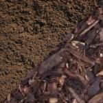 Top soil, compost and bark