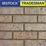 Ibstock Tradesman bricks